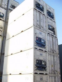 20ft vriescontainer